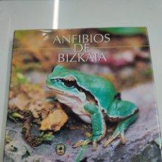 Libros de segunda mano: ANFIBIOS DE BIZKAIA DIPUTACION FORAL FERNANDO PEDRO PEREZ CARTONE ILUSTRADO CASTELLANO PAIS VASCO. Lote 269625483