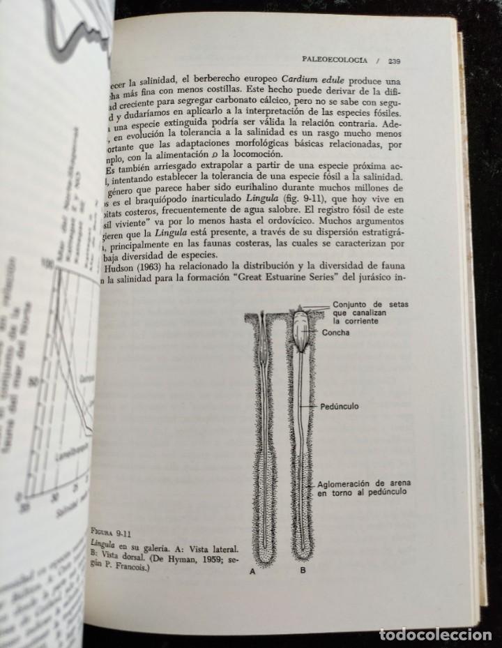 Libros de segunda mano: PRINCIPIOS DE PALEONTOLOGIA - RAUP - STANLEY - ARIEL - Foto 5 - 276638078