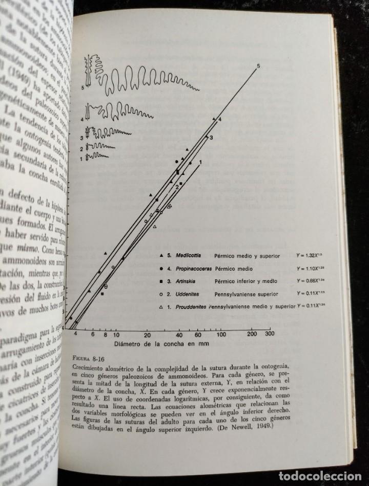 Libros de segunda mano: PRINCIPIOS DE PALEONTOLOGIA - RAUP - STANLEY - ARIEL - Foto 6 - 276638078