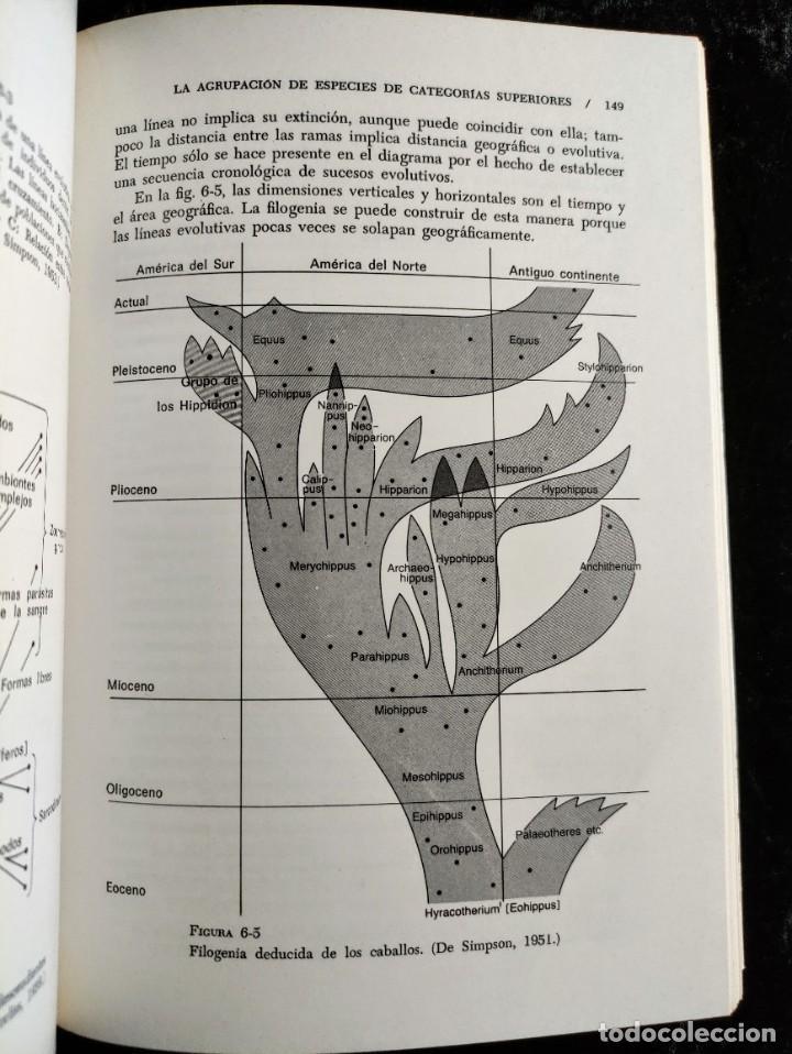 Libros de segunda mano: PRINCIPIOS DE PALEONTOLOGIA - RAUP - STANLEY - ARIEL - Foto 7 - 276638078