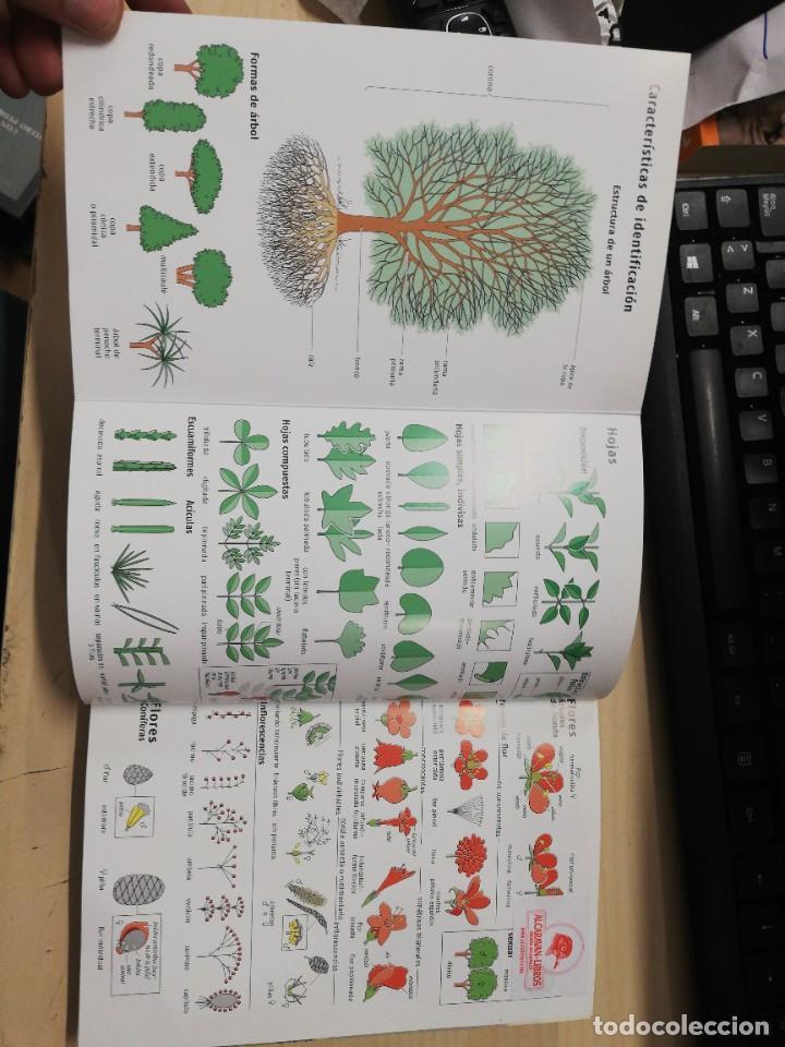 Libros de segunda mano: ARBOLES DE EUROPA.NUEVA GUIA DE CAMPO (GUIAS DEL NATURALISTA-ARBOLES Y ARBUSTOS). SPOHN. 2011 - Foto 2 - 277187248