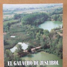 Libros de segunda mano: EL GALACHO DE JUSLIBOL Y SU ENTORNO. UN ESPACIO SINGULAR / 1996. Lote 277452593