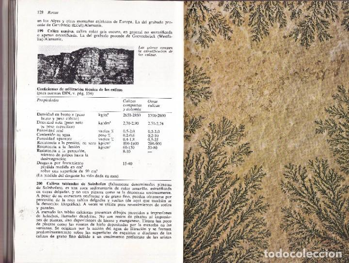 Libros de segunda mano: ROCAS Y MINERALES - WALTER SCHUMANN - EDITORIAL OMEGA 1974 - Foto 5 - 277745948