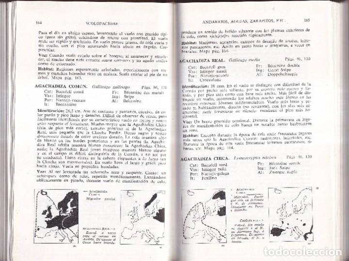 Libros de segunda mano: GUIA DE CAMPO DE LAS AVES DE ESPAÑA Y DE EUROPA - PETERSON, MOUNTFORT, HOLLOM - ED. OMEGA 1967 - Foto 5 - 277747198