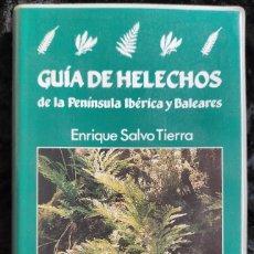Libros de segunda mano: GUIA DE HELECHOS DE LA PENINSULA IBERICA Y BALEARES - E. SALVO - PIRAMIDE - MUY ILUSTRADO. Lote 278216468