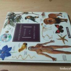 Libros de segunda mano: ENCICLOPEDIA VISUAL DE LOS SERES VIVOS / CUERPO HUMANO ANIMALES PLANTAS / EL PAIS ALTEA / AK82. Lote 278628338
