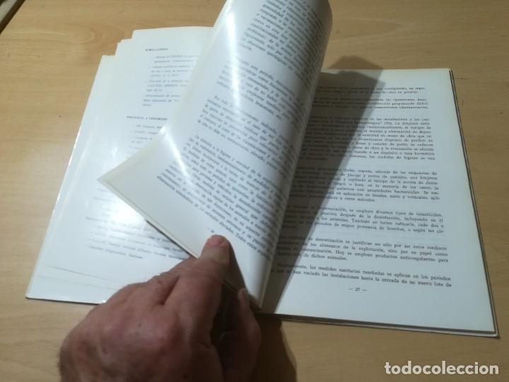 Libros de segunda mano: MODELIZACION EMPRESA PRODUCCION PORCINA / A SAEZ OLIVITO / UNIVERSIDAD ZARAGOZA / AL48 - Foto 10 - 278628423