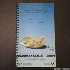Libros de segunda mano: FACIES MARINAS CONTINENTALES ROCAS SILÍCEAS SEDIMENTARIAS GUÍA EXCURSIÓN IGME UNIVERSIDAD PAÍS VASCO. Lote 278761783