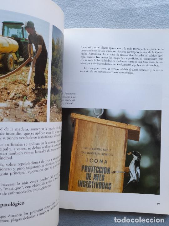 Libros de segunda mano: Manual de Forestación en Tierras Agrícolas. - Foto 6 - 285762828