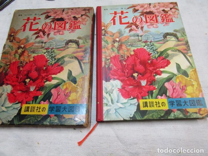 ENCICLOPEDIA DE LAS 5 FLORES - EIICHI ASAYANA - EDI KODANSHA JAPON 1966, INTEGRO EN JAPONES + INFO (Libros de Segunda Mano - Ciencias, Manuales y Oficios - Biología y Botánica)