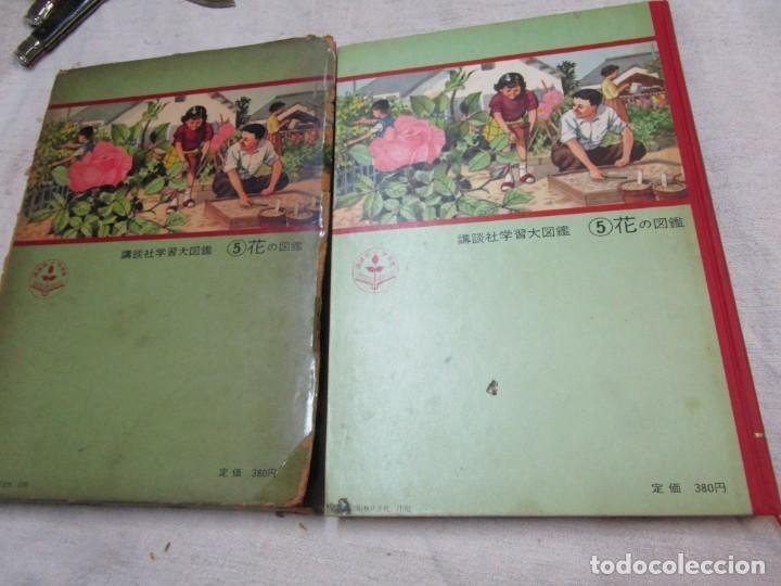 Libros de segunda mano: ENCICLOPEDIA DE LAS 5 FLORES - EIICHI ASAYANA - EDI KODANSHA JAPON 1966, INTEGRO EN JAPONES + INFO - Foto 2 - 287348853