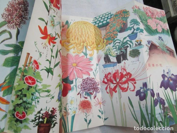 Libros de segunda mano: ENCICLOPEDIA DE LAS 5 FLORES - EIICHI ASAYANA - EDI KODANSHA JAPON 1966, INTEGRO EN JAPONES + INFO - Foto 5 - 287348853