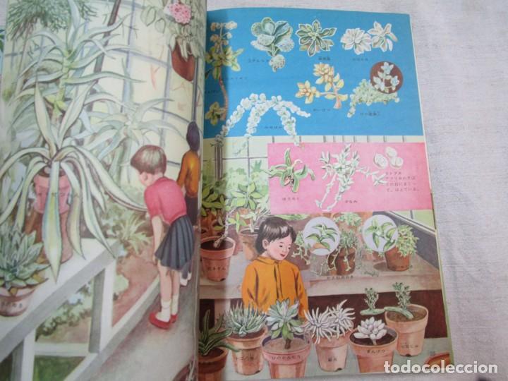 Libros de segunda mano: ENCICLOPEDIA DE LAS 5 FLORES - EIICHI ASAYANA - EDI KODANSHA JAPON 1966, INTEGRO EN JAPONES + INFO - Foto 6 - 287348853