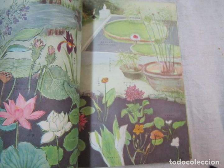 Libros de segunda mano: ENCICLOPEDIA DE LAS 5 FLORES - EIICHI ASAYANA - EDI KODANSHA JAPON 1966, INTEGRO EN JAPONES + INFO - Foto 7 - 287348853