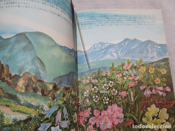 Libros de segunda mano: ENCICLOPEDIA DE LAS 5 FLORES - EIICHI ASAYANA - EDI KODANSHA JAPON 1966, INTEGRO EN JAPONES + INFO - Foto 8 - 287348853