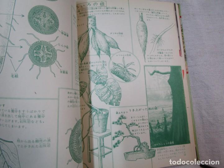 Libros de segunda mano: ENCICLOPEDIA DE LAS 5 FLORES - EIICHI ASAYANA - EDI KODANSHA JAPON 1966, INTEGRO EN JAPONES + INFO - Foto 9 - 287348853