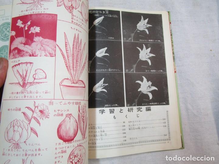 Libros de segunda mano: ENCICLOPEDIA DE LAS 5 FLORES - EIICHI ASAYANA - EDI KODANSHA JAPON 1966, INTEGRO EN JAPONES + INFO - Foto 12 - 287348853