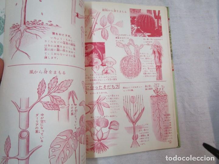 Libros de segunda mano: ENCICLOPEDIA DE LAS 5 FLORES - EIICHI ASAYANA - EDI KODANSHA JAPON 1966, INTEGRO EN JAPONES + INFO - Foto 13 - 287348853