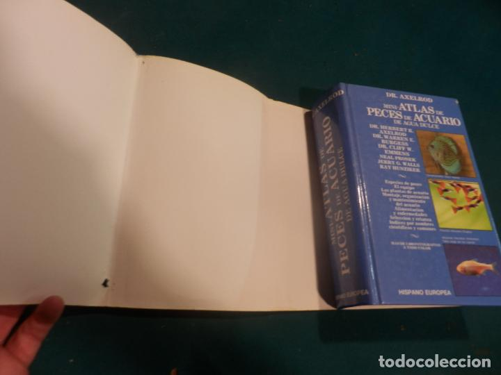 Libros de segunda mano: MINI-ATLAS DE PECES DE ACUARIO DE AGUA DULCE - DR. AXELROD - MAS DE 1.800 FOTOS - AÑO 1992 - Foto 3 - 288436068