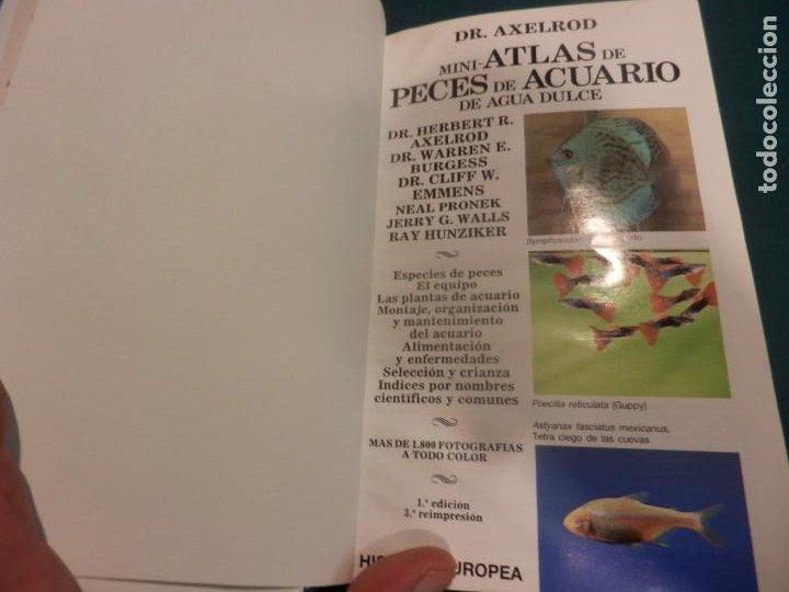 Libros de segunda mano: MINI-ATLAS DE PECES DE ACUARIO DE AGUA DULCE - DR. AXELROD - MAS DE 1.800 FOTOS - AÑO 1992 - Foto 4 - 288436068