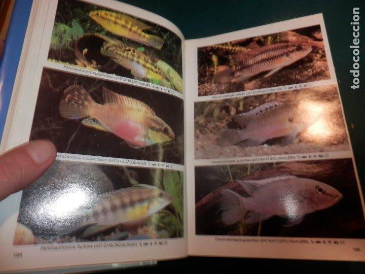 Libros de segunda mano: MINI-ATLAS DE PECES DE ACUARIO DE AGUA DULCE - DR. AXELROD - MAS DE 1.800 FOTOS - AÑO 1992 - Foto 5 - 288436068
