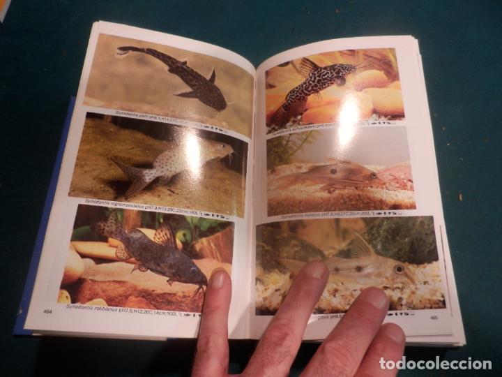 Libros de segunda mano: MINI-ATLAS DE PECES DE ACUARIO DE AGUA DULCE - DR. AXELROD - MAS DE 1.800 FOTOS - AÑO 1992 - Foto 6 - 288436068