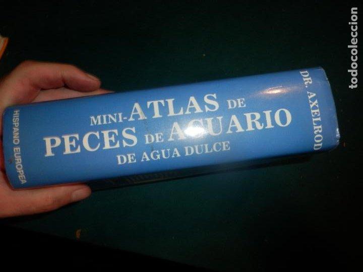 Libros de segunda mano: MINI-ATLAS DE PECES DE ACUARIO DE AGUA DULCE - DR. AXELROD - MAS DE 1.800 FOTOS - AÑO 1992 - Foto 10 - 288436068