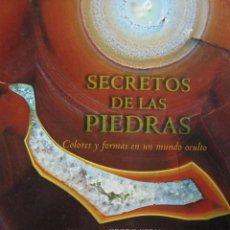 Libros de segunda mano: LOTE 134396286: EL LIBRO DE ORO DE LOS MAGOS Y BRUJAS. ED. BLUME 2005.. Lote 288499818