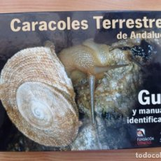 Libros de segunda mano: CARACOLES TERRESTRES DE ANDALUCÍA. GUÍA Y MANUAL DE IDENTIFICACIÓN.FUNDACIÓN GYPAETUS.2006.. Lote 288661168