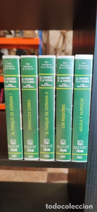 Libros de segunda mano: Colección El hombre y la tierra. Fauna Ibérica. D. Félix Rodríguez de la Fuente. 30 tomos + 14 VHS. - Foto 2 - 293199678