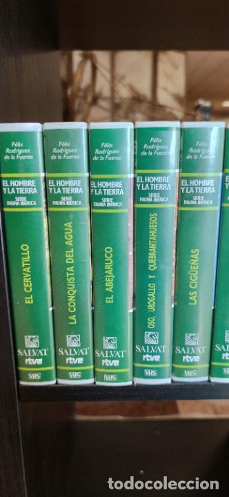 Libros de segunda mano: Colección El hombre y la tierra. Fauna Ibérica. D. Félix Rodríguez de la Fuente. 30 tomos + 14 VHS. - Foto 3 - 293199678