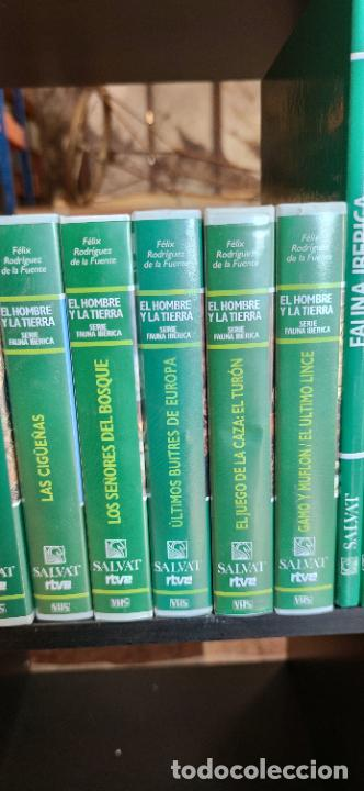Libros de segunda mano: Colección El hombre y la tierra. Fauna Ibérica. D. Félix Rodríguez de la Fuente. 30 tomos + 14 VHS. - Foto 4 - 293199678