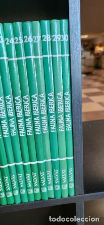 Libros de segunda mano: Colección El hombre y la tierra. Fauna Ibérica. D. Félix Rodríguez de la Fuente. 30 tomos + 14 VHS. - Foto 8 - 293199678