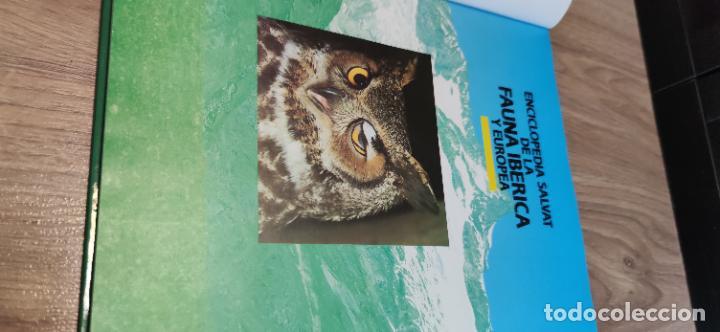 Libros de segunda mano: Colección El hombre y la tierra. Fauna Ibérica. D. Félix Rodríguez de la Fuente. 30 tomos + 14 VHS. - Foto 12 - 293199678