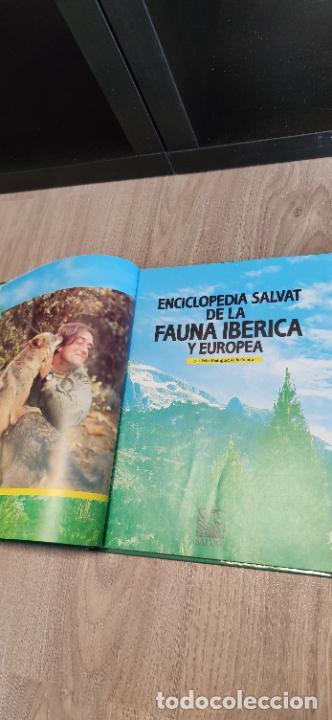 Libros de segunda mano: Colección El hombre y la tierra. Fauna Ibérica. D. Félix Rodríguez de la Fuente. 30 tomos + 14 VHS. - Foto 13 - 293199678