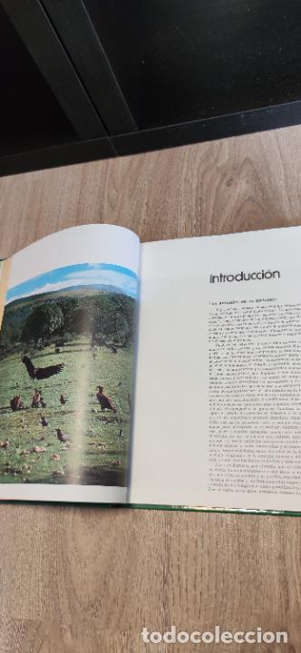 Libros de segunda mano: Colección El hombre y la tierra. Fauna Ibérica. D. Félix Rodríguez de la Fuente. 30 tomos + 14 VHS. - Foto 16 - 293199678