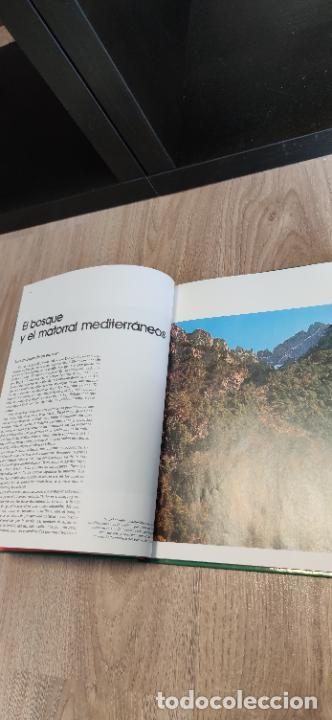 Libros de segunda mano: Colección El hombre y la tierra. Fauna Ibérica. D. Félix Rodríguez de la Fuente. 30 tomos + 14 VHS. - Foto 17 - 293199678