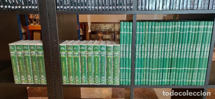 COLECCIÓN EL HOMBRE Y LA TIERRA. FAUNA IBÉRICA. D. FÉLIX RODRÍGUEZ DE LA FUENTE. 30 TOMOS + 14 VHS. (Libros de Segunda Mano - Ciencias, Manuales y Oficios - Biología y Botánica)