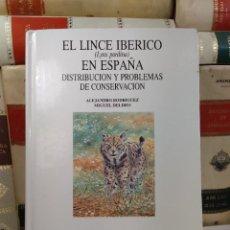 Libros de segunda mano: EL LINCE IBÉRICO (LYNX PARDINA) EN ESPAÑA. DISTRIBUCIÓN Y PROBLEMAS DE CONSERCACIÓN. RODRÍGUEZ, AL. Lote 293893343