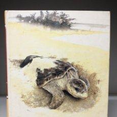 Libros de segunda mano: LIBRO: NATURE IN DANGER (EN INGLÉS) ESPECIES EN PELIGRO. Lote 295497438