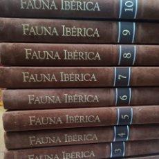 Libros de segunda mano: FELIX RODRIGUEZ DE LA FUENTE FAUNA IBÉRICA Y EUROPEA. EL HOMBRE Y LA TIERRA SA6112. Lote 297013753