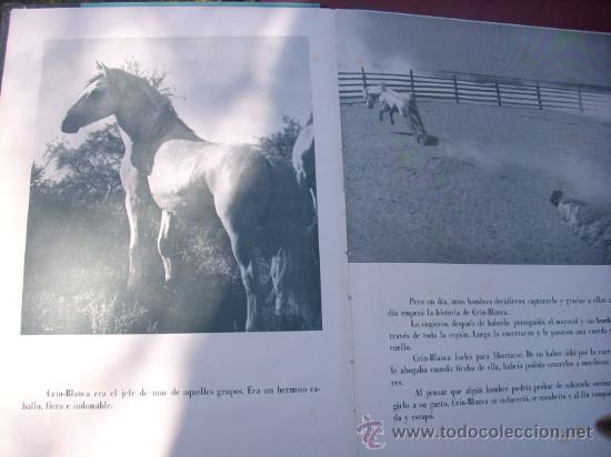 Libros de segunda mano: LOTE DE 5 LIBROS - MIS PELICULAS - MAUCCI - ESPAÑA (1959) BEN HUR/ ESPARTACO/ EL PEZ ROJO/ OTROS - Foto 9 - 27034753