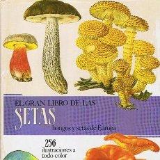 Libros de segunda mano: EL GRAN LIBRO DE LAS SETAS PRIMERA EDICIÓN 1989. Lote 49983883