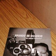 Libros de segunda mano: AMANDO DE OSSORIO: UN GALEGO FANTÁSTICO. Lote 179129260