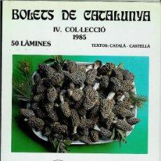 Libros de segunda mano: BOLETS DE CATALUNYA IV. COL·LECCIÓ 1985. Lote 28065686