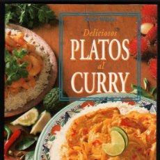 Libros de segunda mano: DELICIOSOS PLATOS AL CURRY - ANNE WILSON - ILUSTRADO *. Lote 221990396