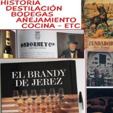 Libros de segunda mano: LIBRO EL BRANDY DE JEREZ HISTORIA VID Y VINO CÁDIZ ANDALUCÍA BODEGAS COCINA ETC BEBIDA MUY ILUSTRADO. Lote 50956881