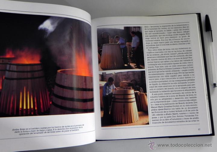 Libros de segunda mano: LIBRO EL BRANDY DE JEREZ HISTORIA VID Y VINO CÁDIZ ANDALUCÍA BODEGAS COCINA ETC BEBIDA MUY ILUSTRADO - Foto 5 - 50956881