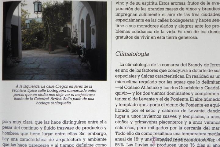 Libros de segunda mano: LIBRO EL BRANDY DE JEREZ HISTORIA VID Y VINO CÁDIZ ANDALUCÍA BODEGAS COCINA ETC BEBIDA MUY ILUSTRADO - Foto 6 - 50956881