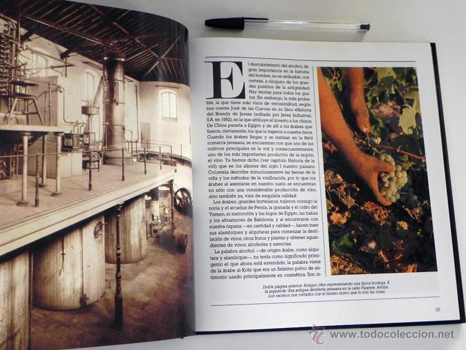 Libros de segunda mano: LIBRO EL BRANDY DE JEREZ HISTORIA VID Y VINO CÁDIZ ANDALUCÍA BODEGAS COCINA ETC BEBIDA MUY ILUSTRADO - Foto 7 - 50956881
